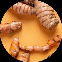 cellavent-ingredients_referenzen-kurkuma